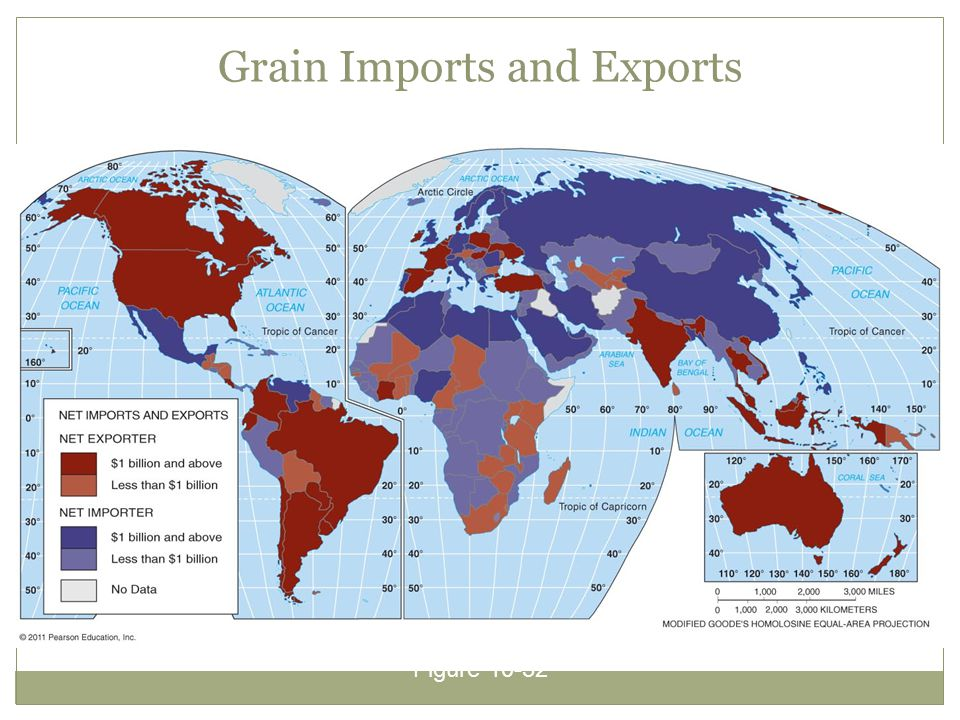 Grain Imports and Exports