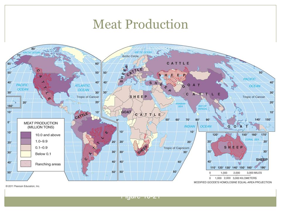Meat Production Figure 10-21