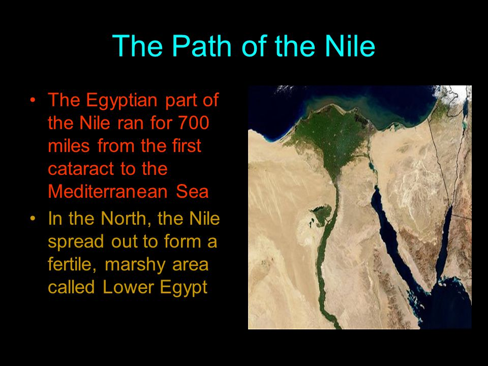 The Path of the Nile The Egyptian part of the Nile ran for 700 miles from the first cataract to the Mediterranean Sea.