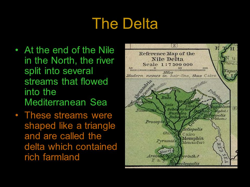 The Delta At the end of the Nile in the North, the river split into several streams that flowed into the Mediterranean Sea.