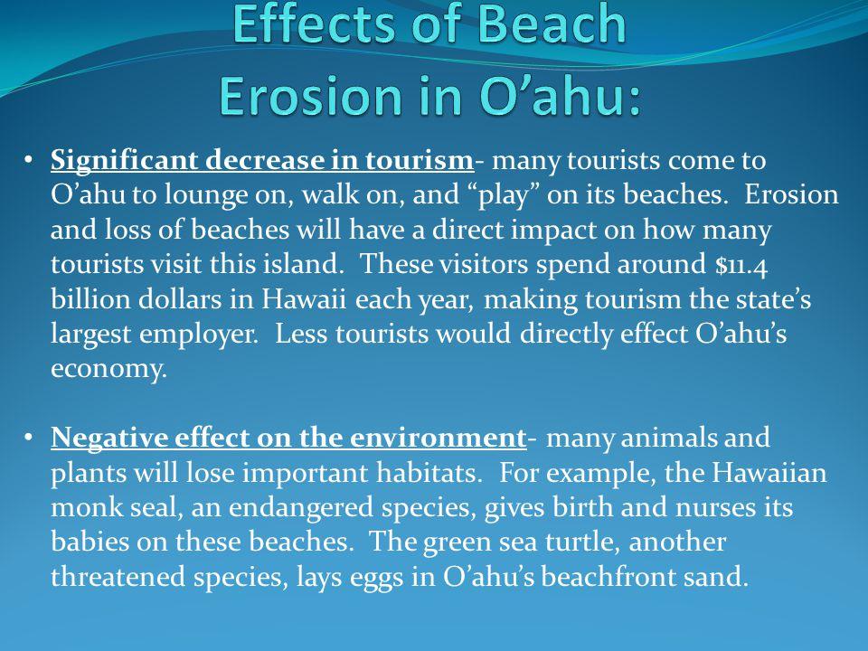 Effects of Beach Erosion in O'ahu: