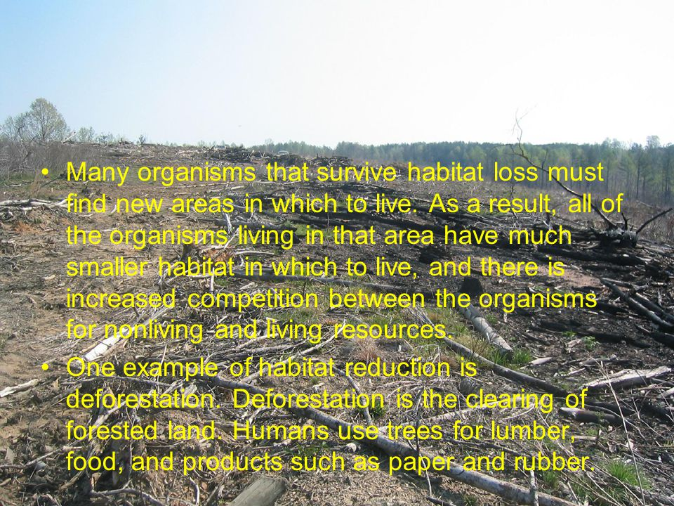 Many organisms that survive habitat loss must find new areas in which to live. As a result, all of the organisms living in that area have much smaller habitat in which to live, and there is increased competition between the organisms for nonliving and living resources.