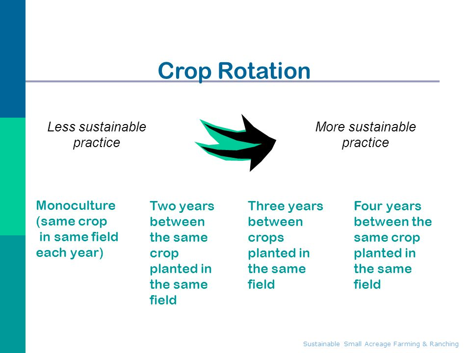 Crop Rotation Less sustainable practice More sustainable practice
