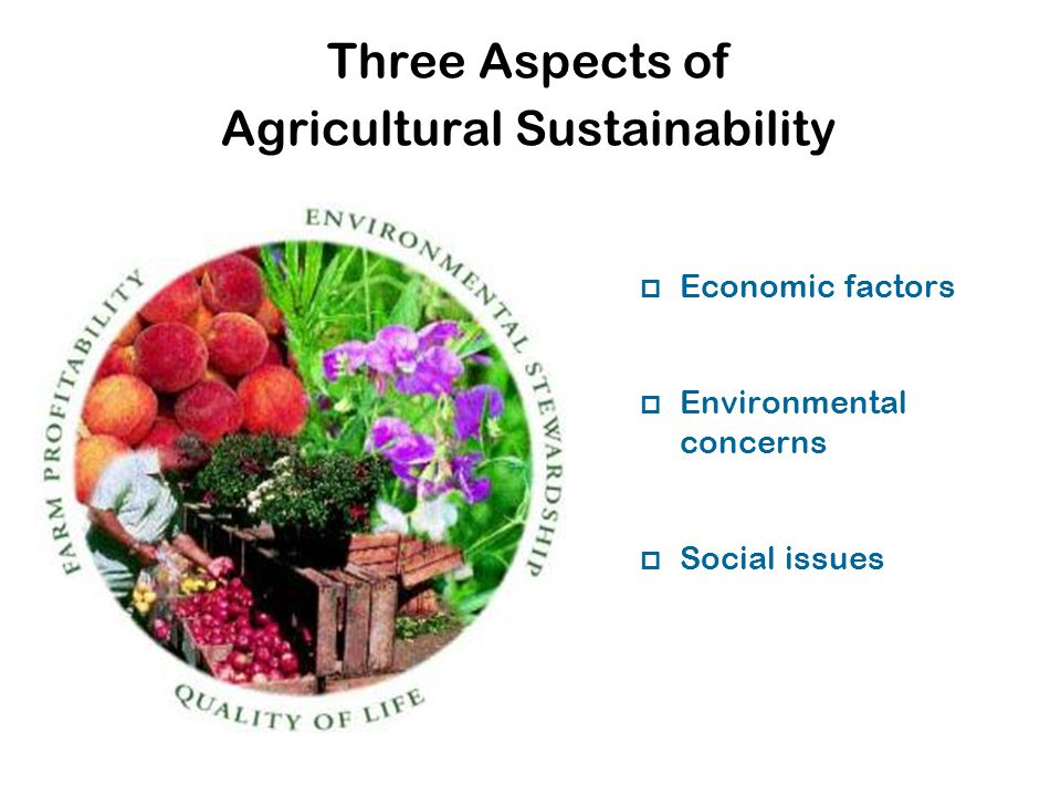 Three Aspects of Agricultural Sustainability