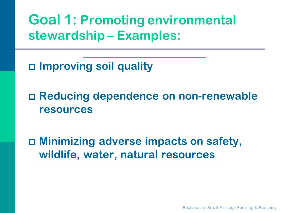 Goal 1: Promoting environmental stewardship – Examples: