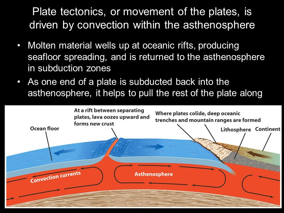 Plate tectonics, or movement of the plates, is driven by convection within the asthenosphere