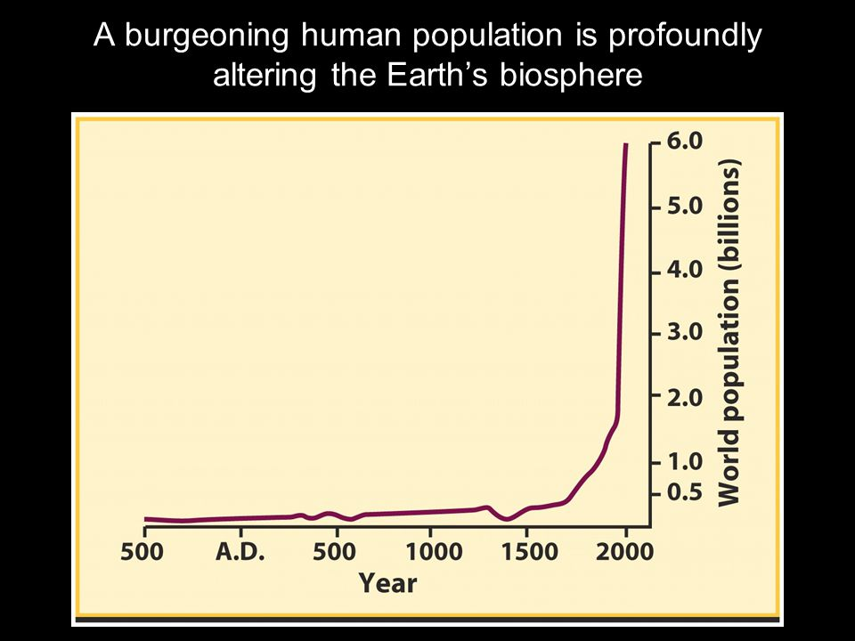 A burgeoning human population is profoundly altering the Earth's biosphere