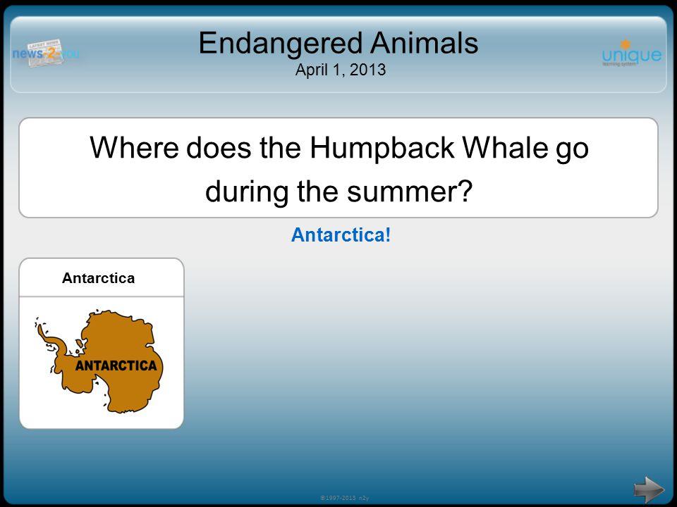 Endangered Animals April 1, 2013