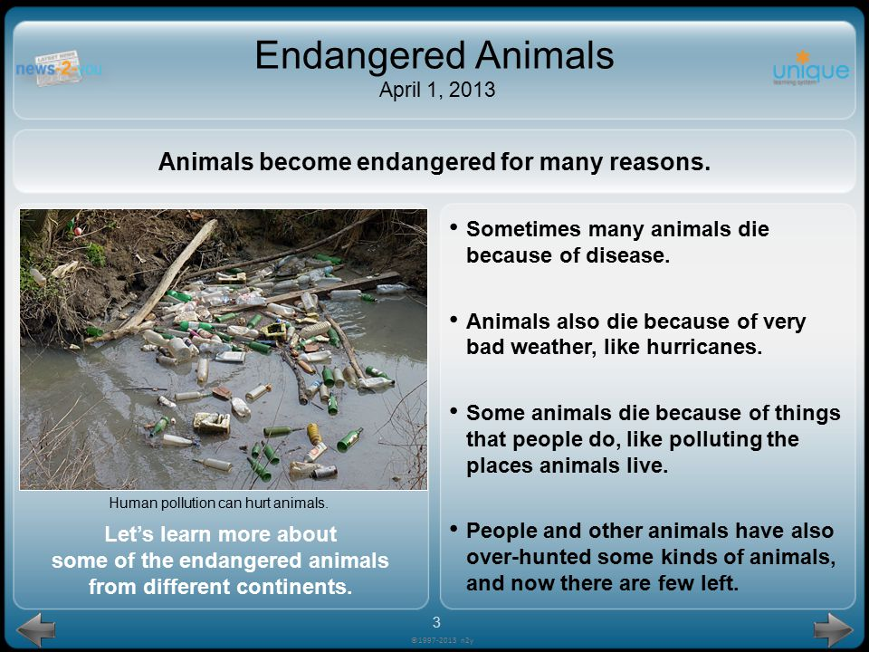 Animals become endangered for many reasons.