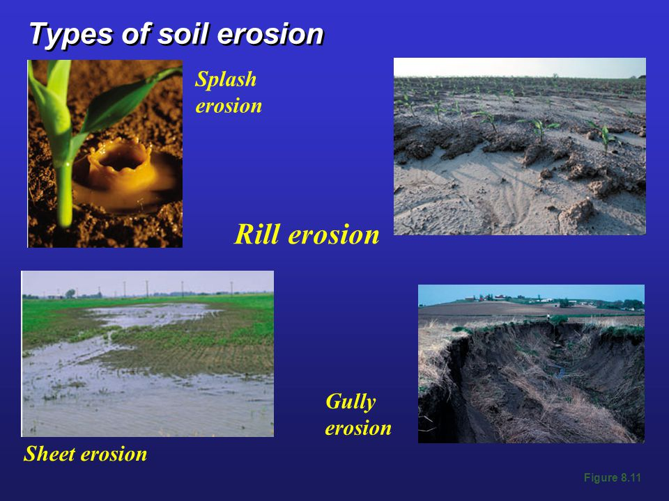 Types of soil erosion Rill erosion Splash erosion Gully erosion