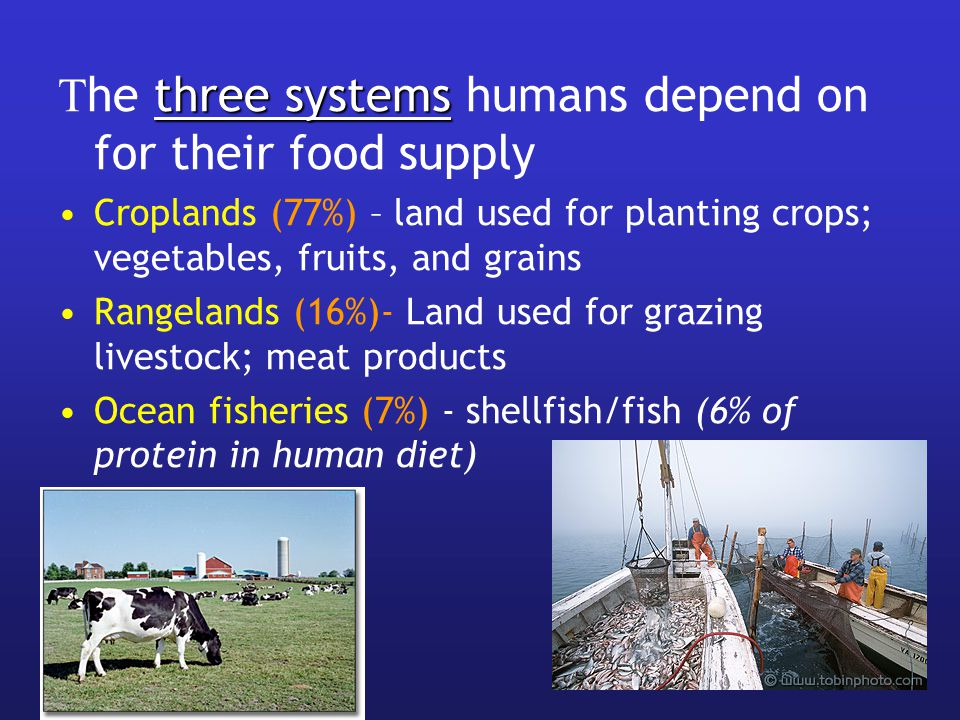 The three systems humans depend on for their food supply