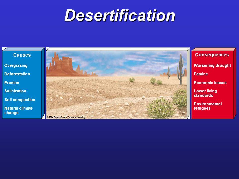 Desertification Causes Consequences Worsening drought Famine