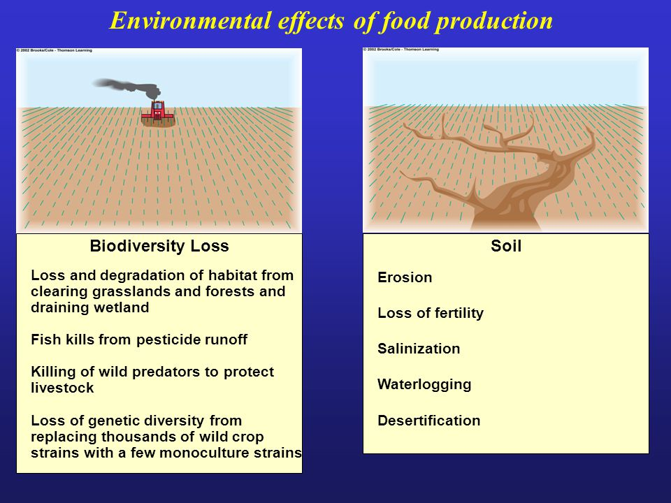 Environmental effects of food production