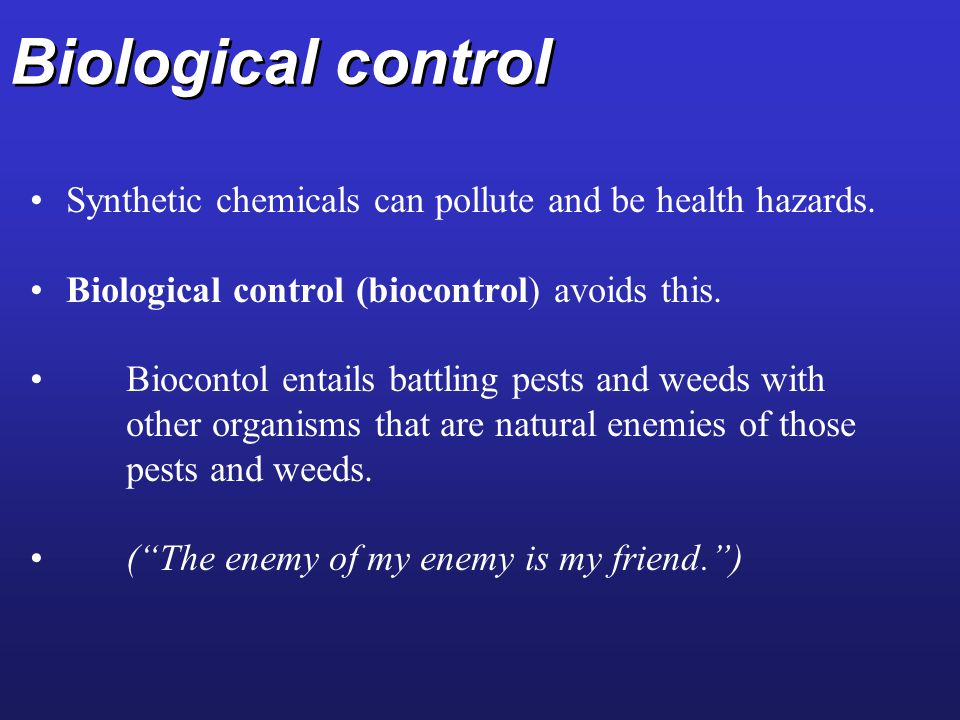 Biological control Synthetic chemicals can pollute and be health hazards. Biological control (biocontrol) avoids this.