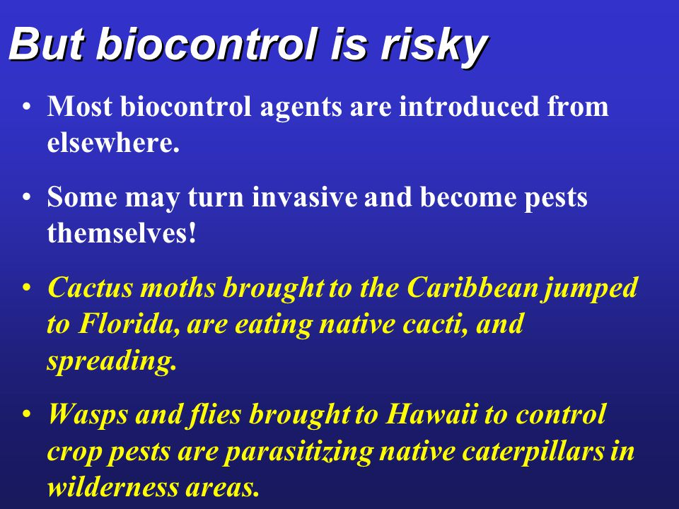 But biocontrol is risky