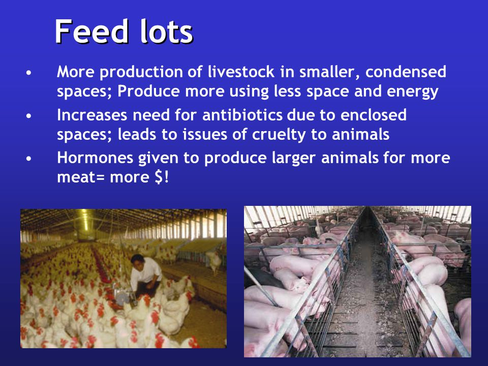 Feed lots More production of livestock in smaller, condensed spaces; Produce more using less space and energy.