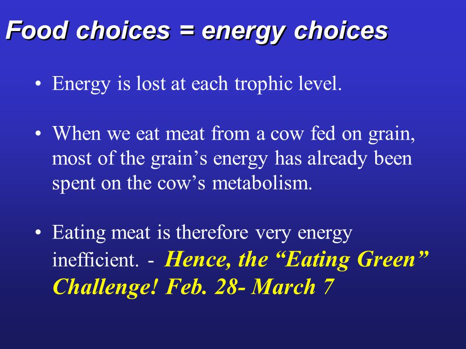 Food choices = energy choices