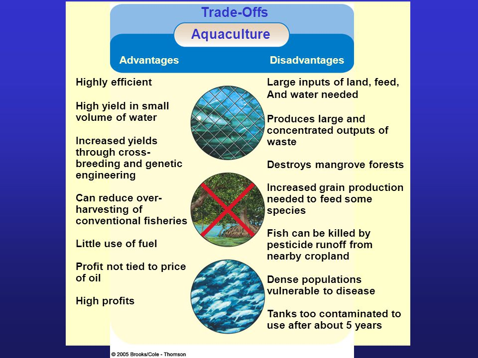 Trade-Offs Aquaculture