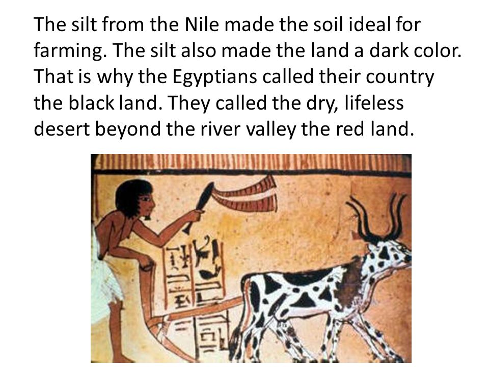 The silt from the Nile made the soil ideal for farming