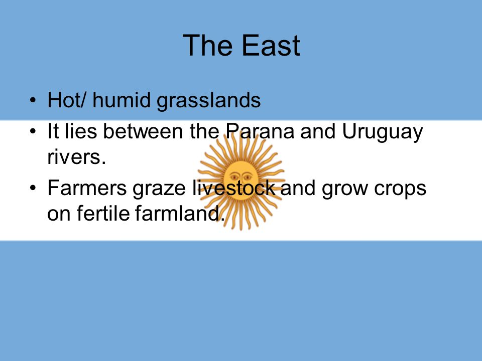 The East Hot/ humid grasslands