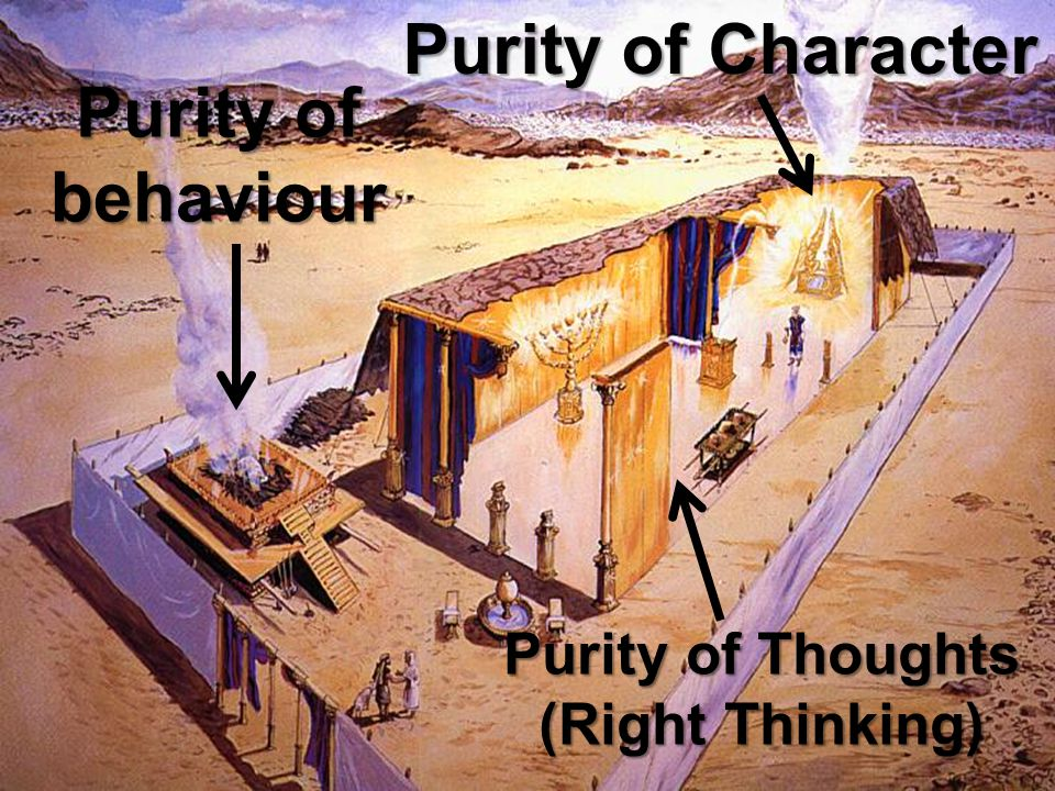 Purity of Character Purity of behaviour