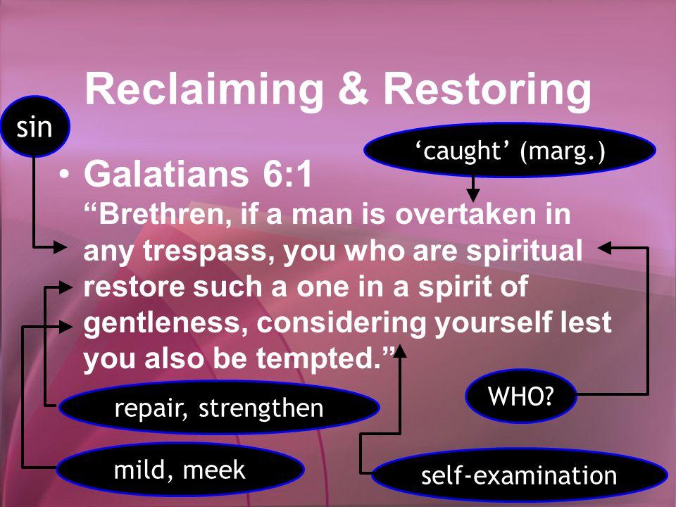 Reclaiming & Restoring