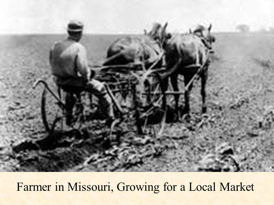 Farmer in Missouri, Growing for a Local Market