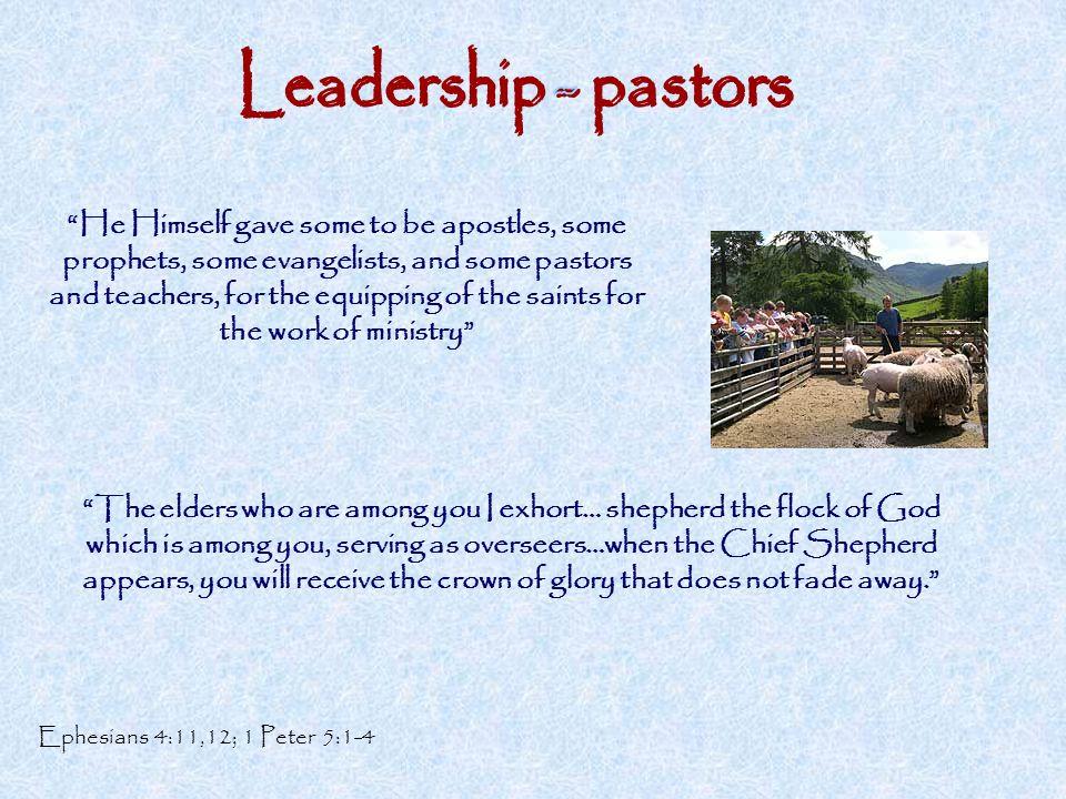 Leadership - pastors