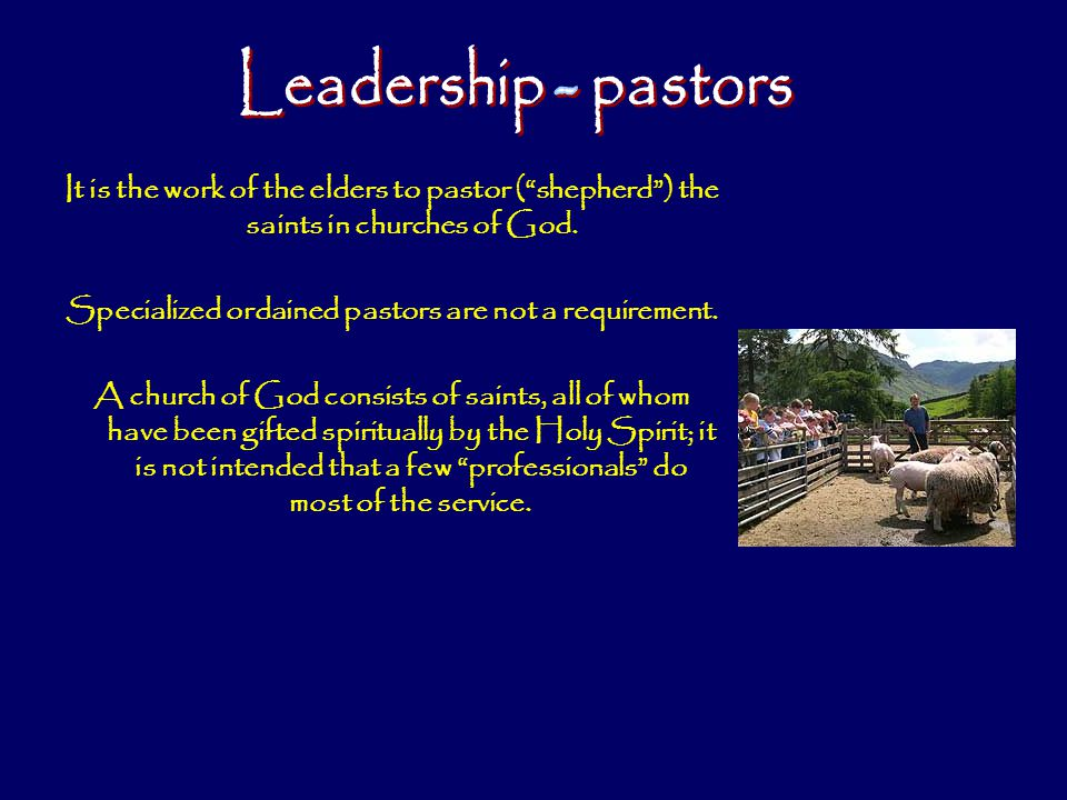 Specialized ordained pastors are not a requirement.