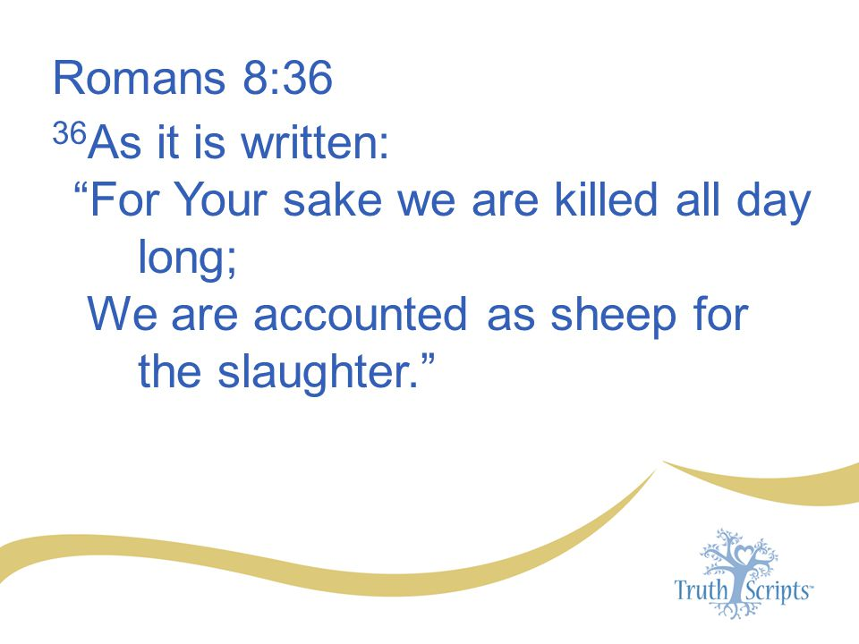 Romans 8:36 36As it is written: For Your sake we are killed all day long; We are accounted as sheep for the slaughter.