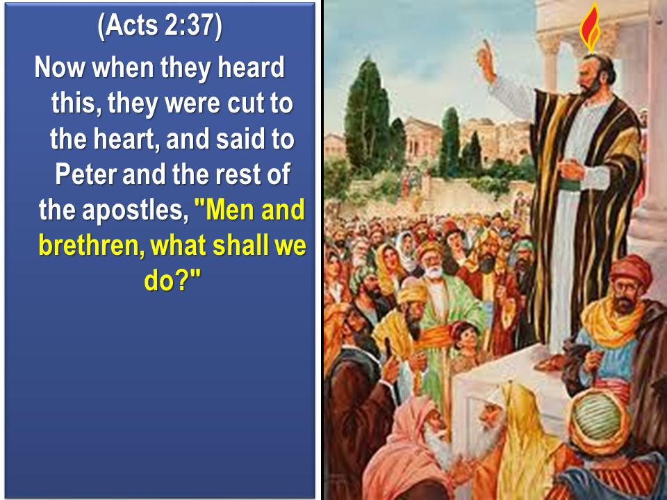(Acts 2:37) Now when they heard this, they were cut to the heart, and said to Peter and the rest of the apostles, Men and brethren, what shall we do