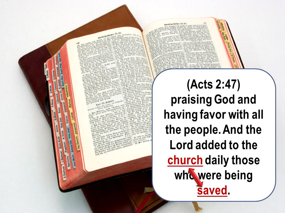 (Acts 2:47) praising God and having favor with all the people.