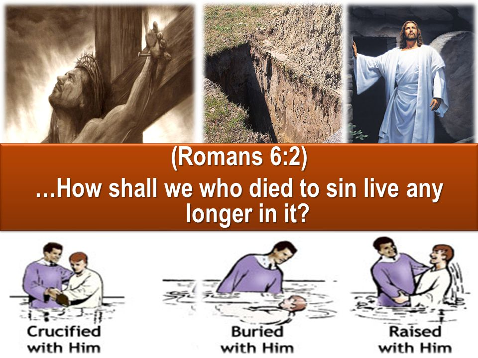 …How shall we who died to sin live any longer in it