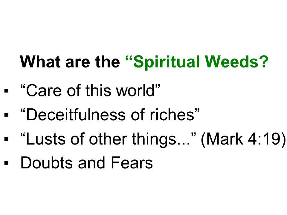What are the Spiritual Weeds