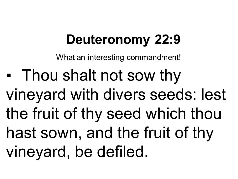 What an interesting commandment!