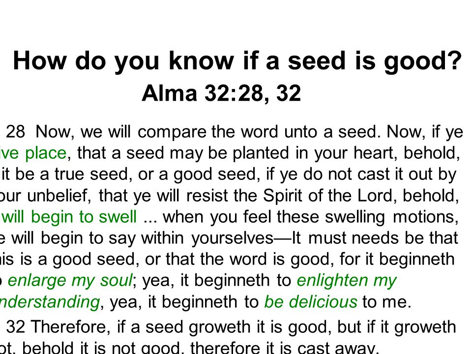 How do you know if a seed is good