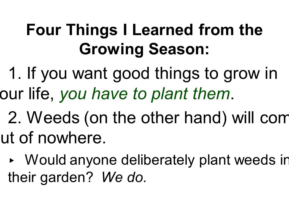 Four Things I Learned from the Growing Season: