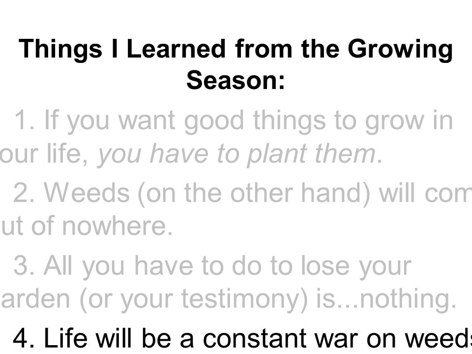 Things I Learned from the Growing Season: