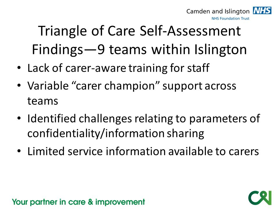 Triangle of Care Self-Assessment Findings—9 teams within Islington