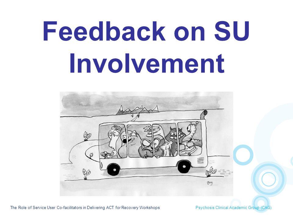 Feedback on SU Involvement