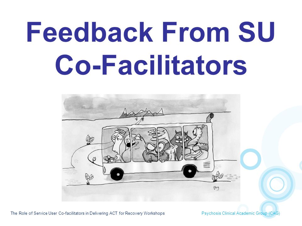 Feedback From SU Co-Facilitators
