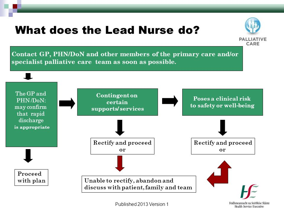 What does the Lead Nurse do