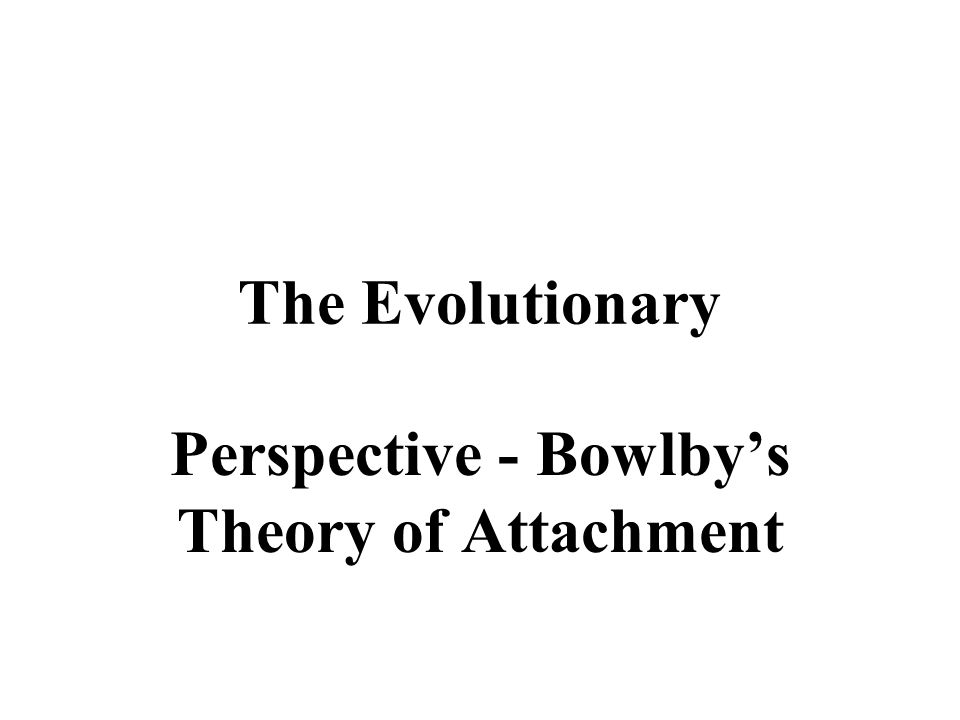 Perspective - Bowlby's Theory of Attachment