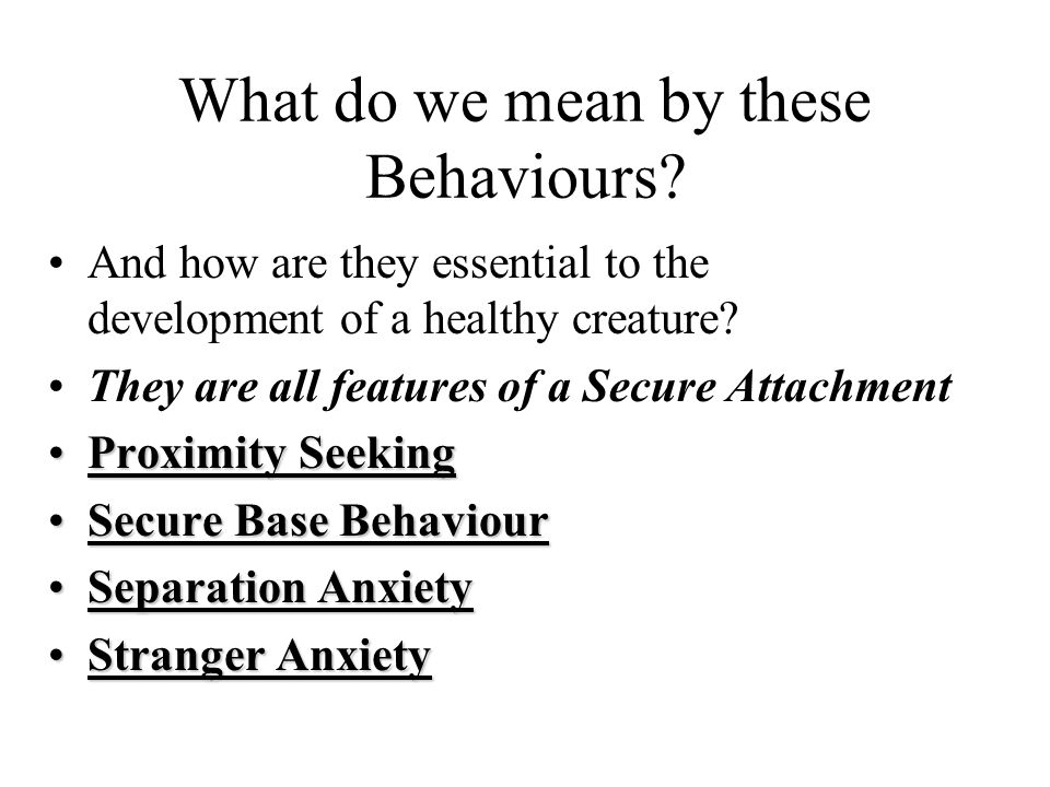 What do we mean by these Behaviours
