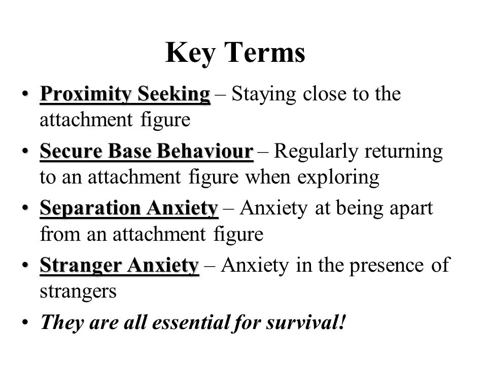 Key Terms Proximity Seeking – Staying close to the attachment figure