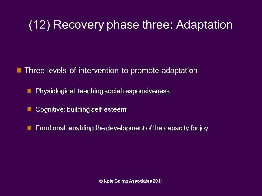 (12) Recovery phase three: Adaptation