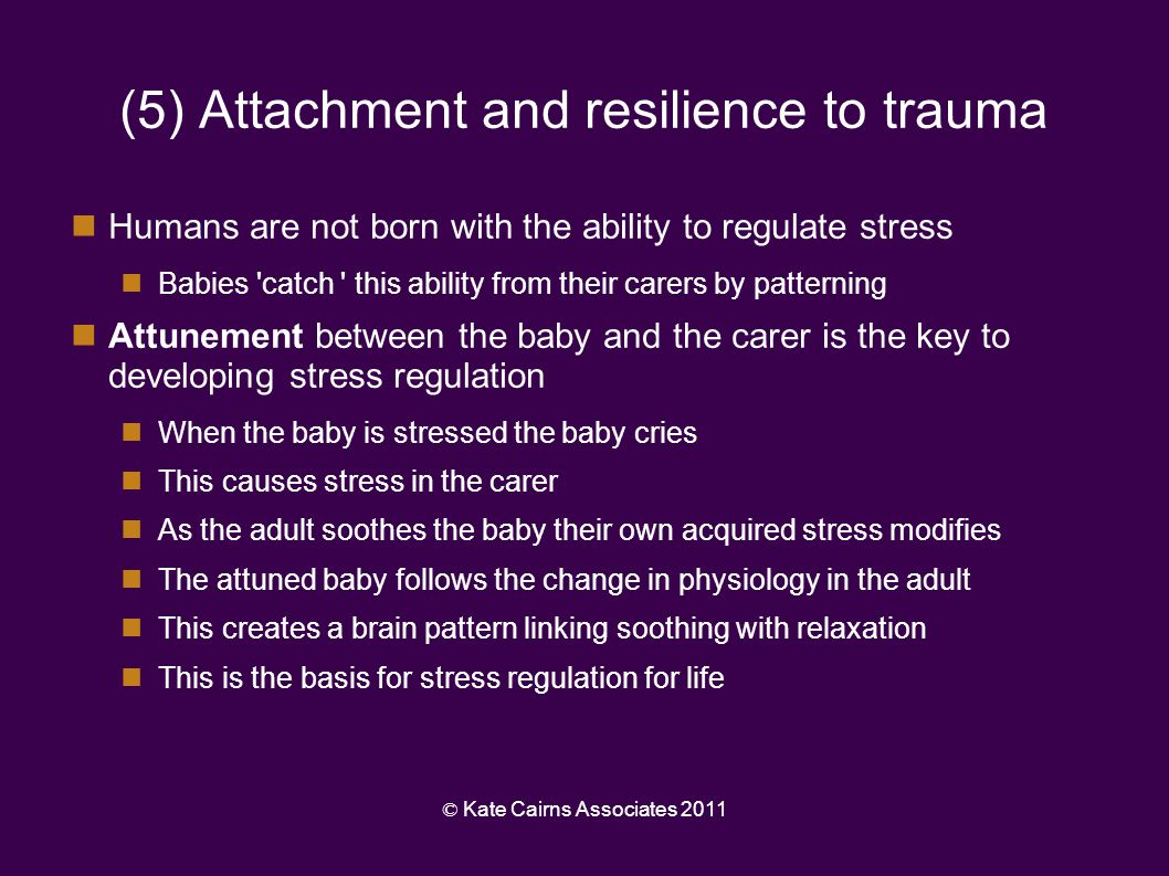 (5) Attachment and resilience to trauma