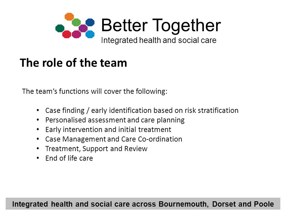 The role of the team The team's functions will cover the following: