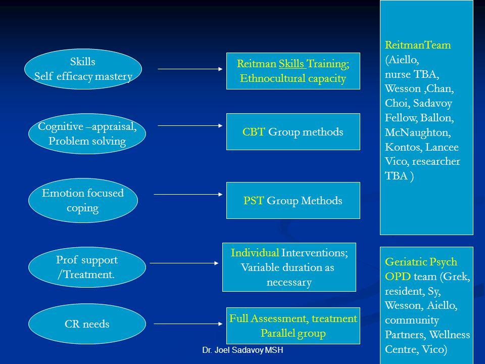 Reitman Skills Training; Ethnocultural capacity