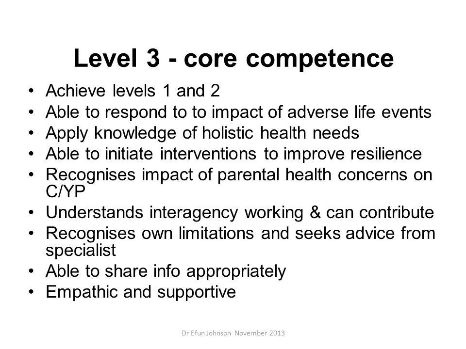 Level 3 - core competence